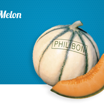 melon_home