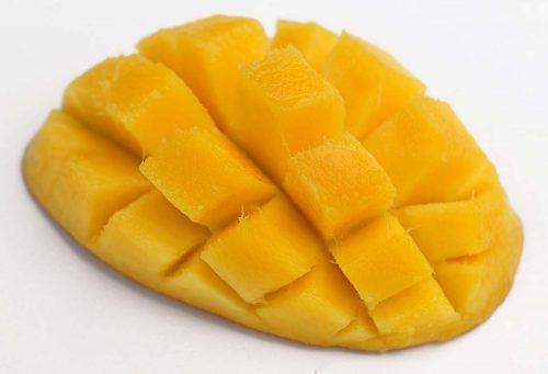 mangue exo PHILIBON